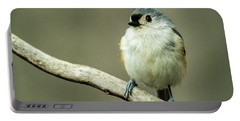 Titmouse Thinking About Weighty Matters Portable Battery Charger