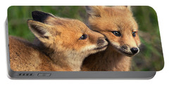 Nuzzle Portable Battery Charger