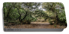 Portable Battery Charger featuring the photograph Oak Forest Trail by Arik Baltinester