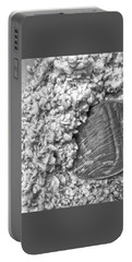 Portable Battery Charger featuring the photograph Oatmeal by Robert Knight