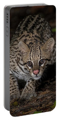 Portable Battery Charger featuring the photograph Ocelot #1 by Wade Aiken