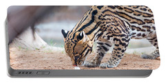 Ocelot And Egg Portable Battery Charger