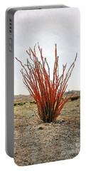 Ocotillo Plant Portable Battery Charger