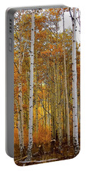 October Aspen Grove  Portable Battery Charger by Deborah Moen