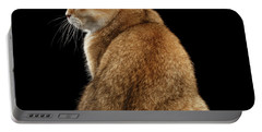 offended British cat Golden color Portable Battery Charger
