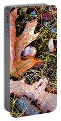 Old Acorns And Leaves Portable Battery Charger