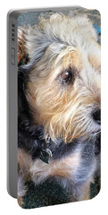 Old Dogs Rock Portable Battery Charger