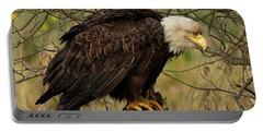 Old Eagle Portable Battery Charger