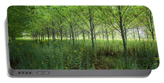 Portable Battery Charger featuring the photograph Old Field Sentinels by Lon Dittrick