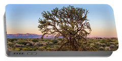Old Growth Cholla Cactus View 2 Portable Battery Charger