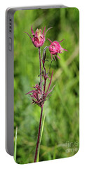 Portable Battery Charger featuring the photograph Old Man's Whiskers by Ann E Robson