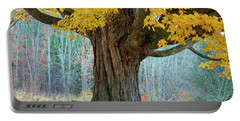 Old Maple Tree And Swing In Autumn Color Portable Battery Charger