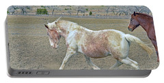 Portable Battery Charger featuring the photograph Old Mare by Debby Pueschel