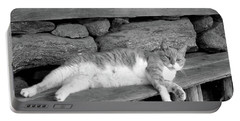 Portable Battery Charger featuring the photograph Old Mill Cat by Sandi OReilly