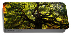 Old Old Angel Oak In Charleston Portable Battery Charger