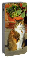 Portable Battery Charger featuring the photograph Old Town Cat by Nikolyn McDonald
