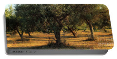 Olive Grove 3 Portable Battery Charger