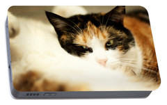 Portable Battery Charger featuring the photograph On A Furry Pillow by Laura Melis