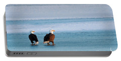 On Ice Portable Battery Charger