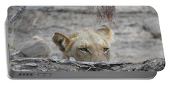 Portable Battery Charger featuring the photograph On The Lookout by Betty-Anne McDonald