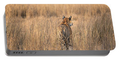 Portable Battery Charger featuring the photograph On The Prowl by Pravine Chester