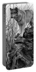 Portable Battery Charger featuring the photograph On Top by Shari Jardina