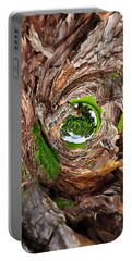 Portable Battery Charger featuring the photograph Once A Tree by Pennie  McCracken