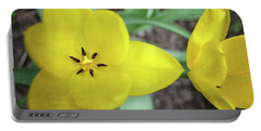 Portable Battery Charger featuring the photograph One And A Half Yellow Tulips by Michelle Calkins