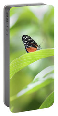 Portable Battery Charger featuring the photograph Orange Black Butterfly by Raphael Lopez