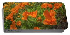 Orange Burst Portable Battery Charger