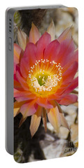 Orange Cactus Flower Portable Battery Charger by Jim And Emily Bush