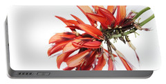 Portable Battery Charger featuring the photograph Orange Clover I by Stephen Mitchell