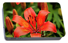 Portable Battery Charger featuring the photograph Orange Day Lilly Single by Mary Jo Allen