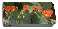 Orange Dream Cactus Portable Battery Charger