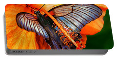 Orange Hibiscus Butterfly Portable Battery Charger by ABeautifulSky Photography