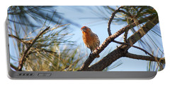 Portable Battery Charger featuring the photograph Orange House Finch 2 by Marilyn Hunt