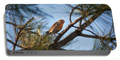 Orange House Finch Portable Battery Charger
