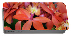Orange Pink Epidendrum Orchid Portable Battery Charger