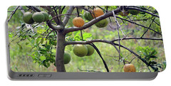Orange Tree Portable Battery Charger