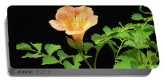 Orange Trumpet Flower Portable Battery Charger