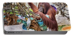 Orangutan In Rope Net Portable Battery Charger by Stephanie Hayes