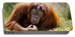 Orangutan In The Grass Portable Battery Charger