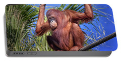 Orangutan On Ropes Portable Battery Charger by Stephanie Hayes