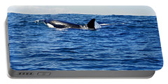 Orca Portable Battery Charger by Marilyn Wilson