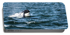 Orca Whale Portable Battery Charger