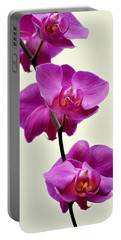 Orchid 26 Portable Battery Charger