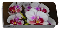 Orchid 306 Portable Battery Charger