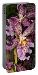 Orchid 347 Portable Battery Charger