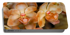 Orchid 392 Portable Battery Charger