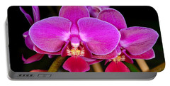 Orchid 422 Portable Battery Charger